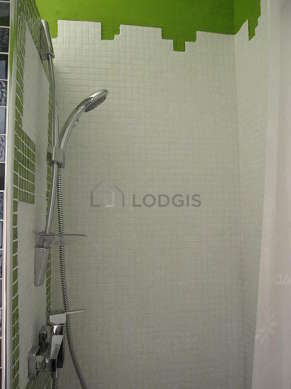 Bathroom equipped with washing machine, shower in bath tub