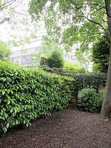 Apartamento Paris 15° - Jardim