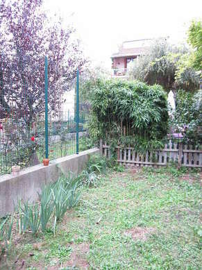 Garden furnished with dining table