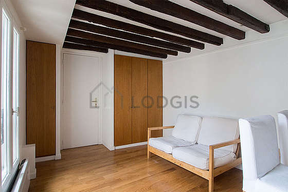 Beautiful, very quiet and bright sitting room of an apartmentin Paris