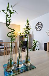 Apartment Val de marne - Living room