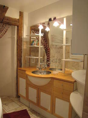 Pleasant bathroom with windows and with tilefloor