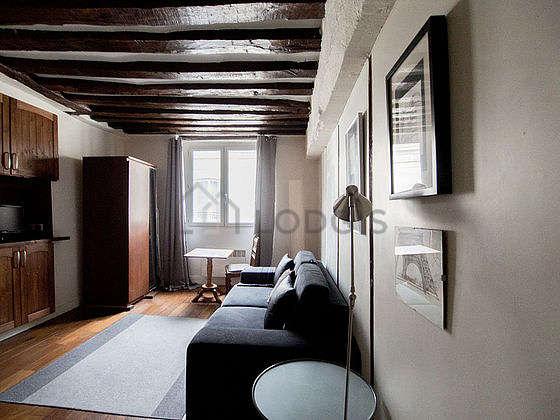 Beautiful sitting room of an apartmentin Paris